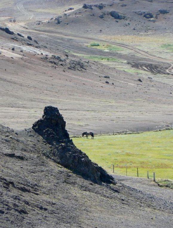 horsefield